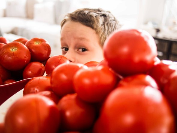 Behind the Everest of Tomatoes