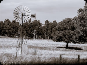 Windmill near Dubbo